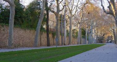 luz del día barcelona ciudad tranvía línea callejón 4k españa