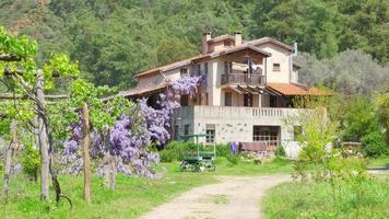 bella casa di paese, pareti piene di fiori