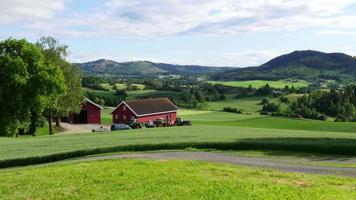 paesaggio del villaggio di campagna norvegese con vista sulla fattoria verde