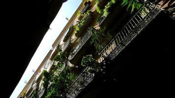 basso angolo di tiro di edifici nel quartiere gotico di barcellona