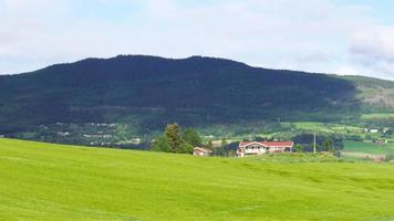 norwegische ländliche Dorflandschaft mit grünem Bauernhofblick video