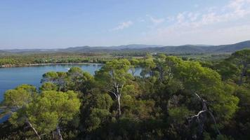 Francia, Cote d'azur, vista aérea de Cap Leoube situado cerca de Bormes les Mimosas video