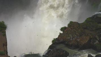 girato dalle cascate iguazu, cataratas brasil, una delle sette meraviglie del mondo
