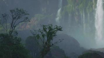 watervallen iguazu cataratas brasil - argentinië natuur bos zuid-amerika video