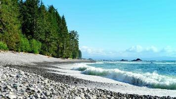 ondas fortes em praia de pedra rochosa, costa noroeste do Pacífico