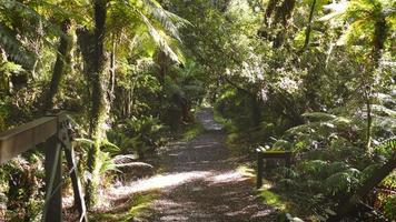 la piste de milford de renommée mondiale sur l'île sud de la Nouvelle-Zélande.