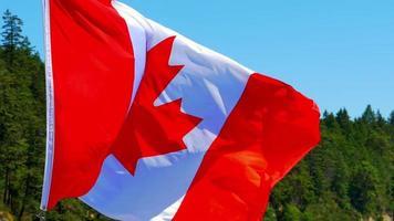 bandera de canadá, hoja de arce roja, símbolo nacional video