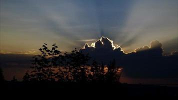 pôr do sol sobre a cidade. silhuetas de árvores contra o céu. na colina ao longe podem ser vistas silhuetas de casas. video