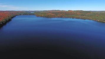 giorno nel parco provinciale di algonquin in autunno | ontario, canada