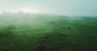 vista aerea volando attraverso la nebbia sulla splendida campagna