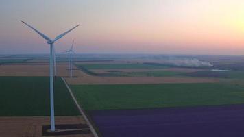 Vista aérea de un paisaje con campo de lavanda y turbinas de viento eléctricas video