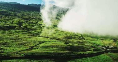 vista aérea voando pela neblina sobre a bela paisagem video
