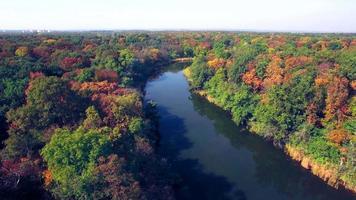 vista aérea do rio na floresta de outono video