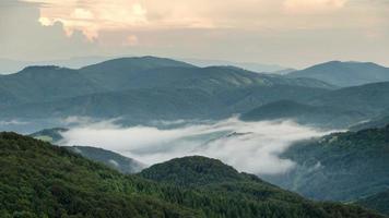 nebliger Abend über Wolken, die sich im Zeitraffer des grünen Waldtals bewegen video