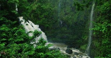 erstaunlicher Wasserfall im tropischen Regenwald auf der Straße nach Hana in Maui, Hawaii