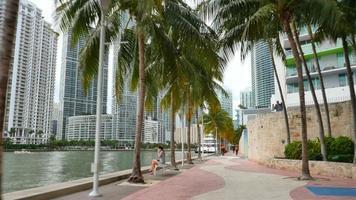 Lincoln Road Miami Beach video