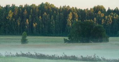 lasso di tempo di nebbia che scorre su un campo durante l'alba