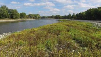 telecamera in movimento su una piccola isola nel fiume maumee, piante verdi e rocce