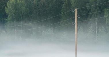 Zeitraffer des Morgennebels zwischen elektrischen Leitungen