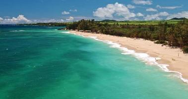 vista aerea della spiaggia alle hawaii