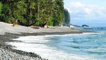 schiuma di acqua bianca mentre le onde blu si infrangono sulla spiaggia del Pacifico nord-occidentale