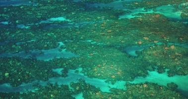 paisagem marinha aérea de recife de coral tropical video