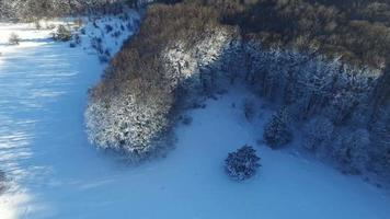 Fly Over a Frozen Forest with a Road. video