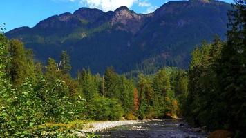 Gebirgslandschaft Tannenbäume, Fluss und Ahornwald im Vordergrund