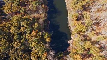 Luftaufnahme des Flusses im Herbstwald video