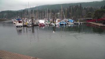 ganges centennial wharf, saltpring island, bc, 4k. uhd