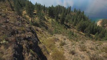schöne Antenne über trockenem östlichen Washington-Wald, um See Roosevelt an sonnigem Tag zu enthüllen video
