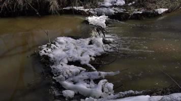 pequenas cachoeiras no rio da floresta