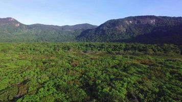 Luftschuss mit natürlicher Drohne, die über Felder fliegt, die an die Küste grenzen video