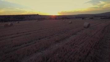 Aerial view on the wheat field with hay bales