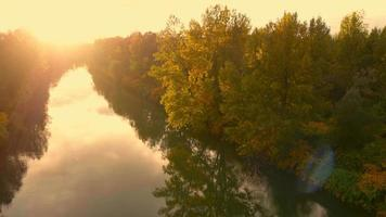 4K Aerial: Passing Golden Tree on River in Fall