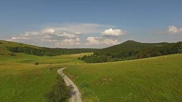 vista aerea del bellissimo paesaggio erboso con alberi video