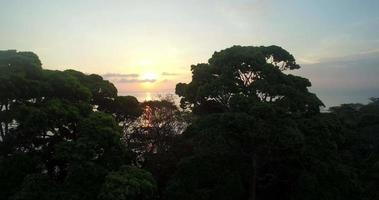 vista do pôr do sol nas praias de puerto jiménez, na costa rica video