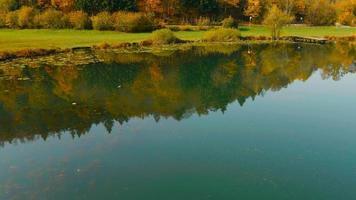 4k aéreo: conducción de coche en la orilla del lago en otoño video