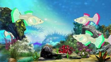 poissons d'aquarium uhd