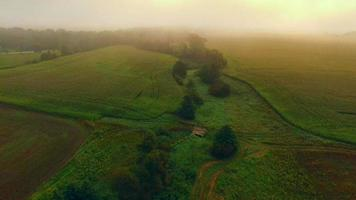 Lush rural landscape disappears into dense ground fog, aerial view video