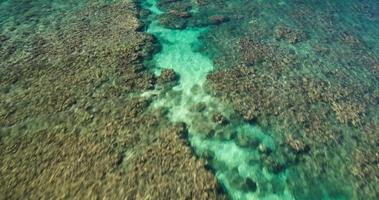 Tropical Coral Reef Aerial Seascape