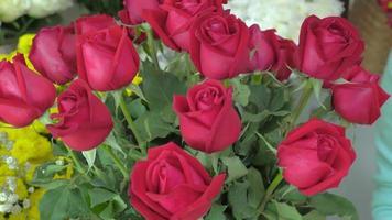 floristería, mano, de, floristería, arreglar, rosas rojas