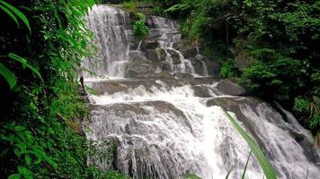 Cachoeira poderosa correndo sobre rochas musgosas com som de 4k video