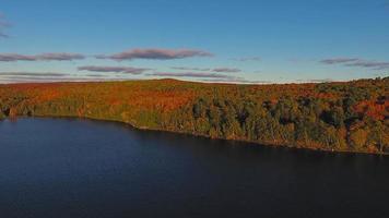 volare sopra gli alberi prima del tramonto in Ontario, Canada.