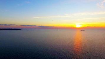 pássaros voando sobre o mar ao pôr do sol video