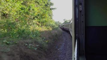 guardando fuori dal finestrino del treno paesaggio estivo che passa
