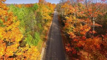 Gliding down rural road amid colorful autumn treetops video
