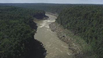 Luftaufnahme, die über den Iguazu-Fluss fliegt und die Dichte und Größe des Atlantischen Waldes zeigt, aufgenommen mit einer 4k-Auflösung des Kinos mit roter Kamera