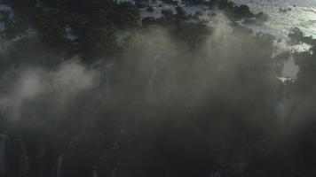 colpo di aria incredibile colpo dall'alto dell'iguazù cade nella foresta atlantica della giungla con una telecamera cinematografica rossa 4K