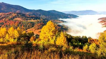 bellissimo paesaggio con colline e montagne